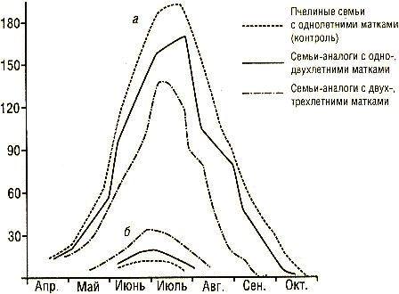 Зависимость количества печатного расплода от возраста маток